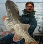 EFI rachète NanoPrint : un gros nano-poisson d'avril !